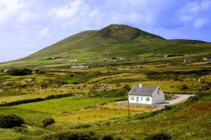 Как выкупить или взять в аренду землю у государства